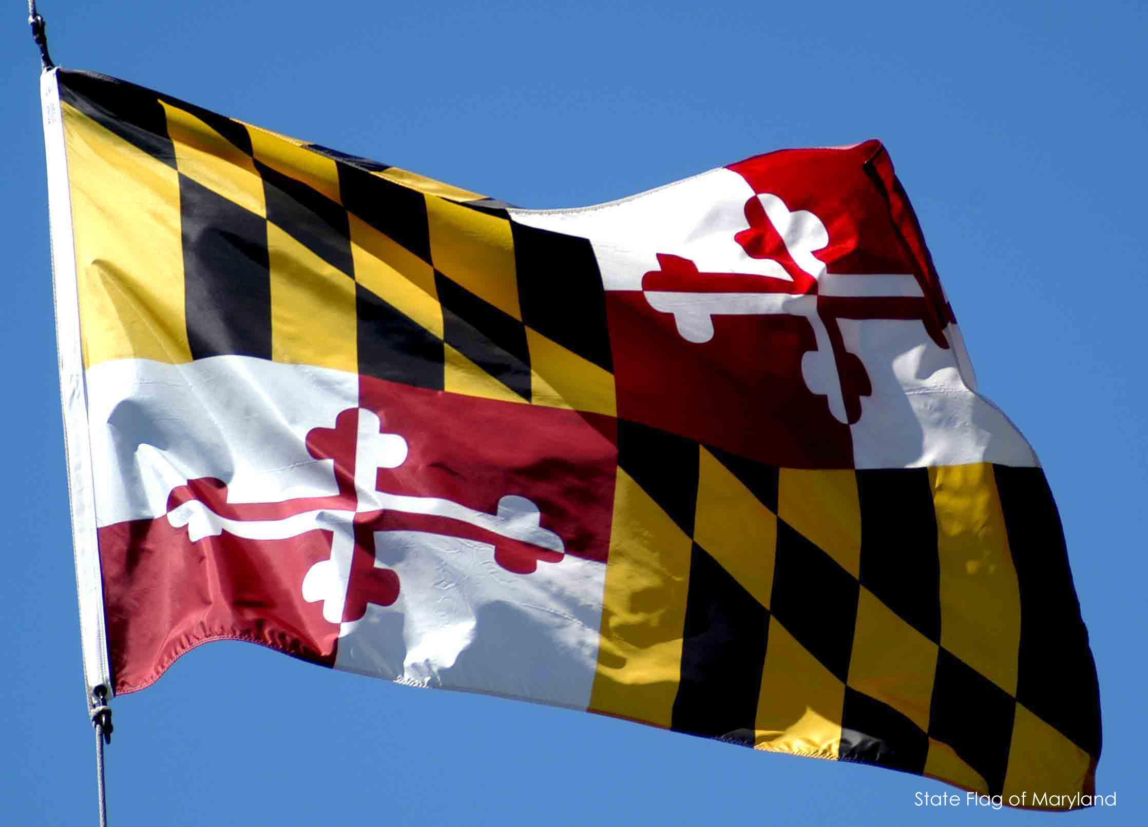 http://msa.maryland.gov/megafile/msa/stagsere/se1/se14/000000/000034/jpg/maryland_flag1.jpe