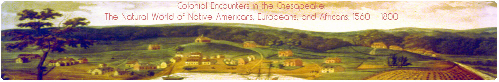 Colonial Encounters in the Chesapeake