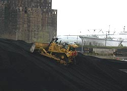 [photo, Caterpillar bulldozer pushing coal, Conrail coal yard, Baltimore, Maryland]
