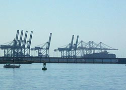 [photo, Seven post-Panamax and four super-post-Panamax cranes, Seagirt Marine Terminal, Port of Baltimore, Baltimore, Maryland]