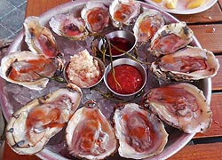 [photo, Oysters on the half-shell, Pratt St., Baltimore, Maryland]