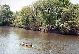 [photo, Crew team on College Creek, Annapolis, Maryland]