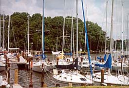 [photo, Sailboats docked at Nabbs Creek, Anne Arundel County, Maryland]