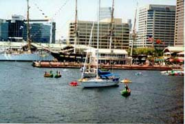 [photo, Sailboats at Inner Harbor, Baltimore, Maryland]