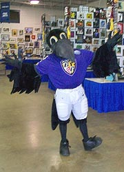 [photo, Poe, the Baltimore Ravens mascot, Maryland State Fair, Timonium, Maryland]