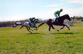 [photo, Horse racing, Marlborough Hunt Races, Roedown Farm, Davidsonville, Maryland]