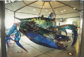 [photo, Stained-glass blue crab, by Jackie Leatherbury Douglass, Baltimore-Washington International Airport (upper level), Maryland]