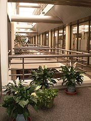 [photo, Atrium, Wayne A. Cawley, Jr. Building, 50 Harry S Truman Parkway, Annapolis, Maryland]