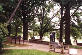 [photo, Campus scene, University of Maryland, College Park, Maryland]