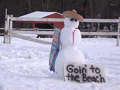 [photo, Snowman Goin' to the Beach, Glen Burnie, Maryland]