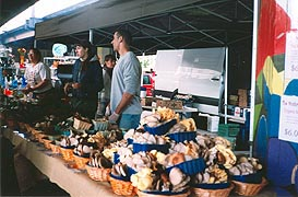 [photo, Mushrooms at Baltimore Farmers' Market, Holliday St. and Saratoga St., Baltimore, Maryland]