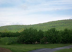 [photo, Catoctin Mountain National Park, Thurmont (Frederick County), Maryland]