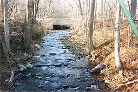 [photo, Little Hunting Creek, Thurmont, Maryland]