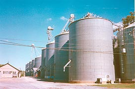 [photo, Grain silos, Wye Mills, Maryland]