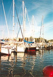 [photo, Sailboats, Back Creek, Annapolis, Maryland]