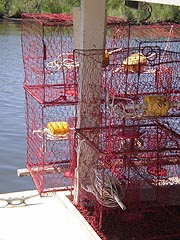 [photo, Crab pots (traps), Chesapeake Beach, Maryland]